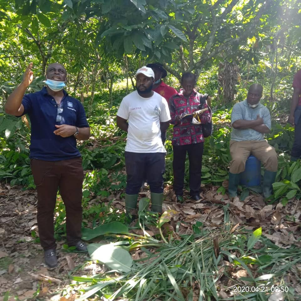 DEPUTY CHIEF EXECUTIVE, AGRONOMY & QUALITY CONTROL TOURS WESTERN SOUTH COCOA REGION
